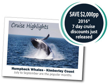 2016 Whale Watching - Discount Offer